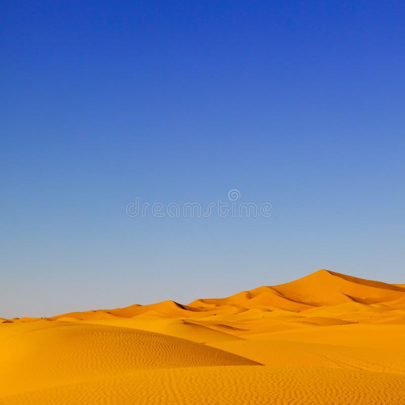 Sanddüne-Marokko-Wüste lizenzfreie stockfotos