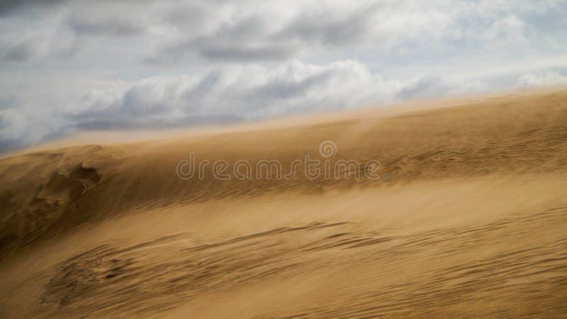 Sanddüne in Uruguay lizenzfreies stockfoto