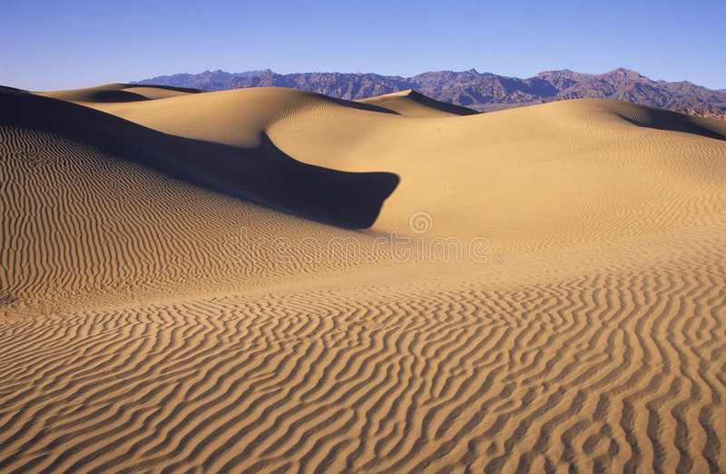 Sanddünen in Death Valley stockbilder