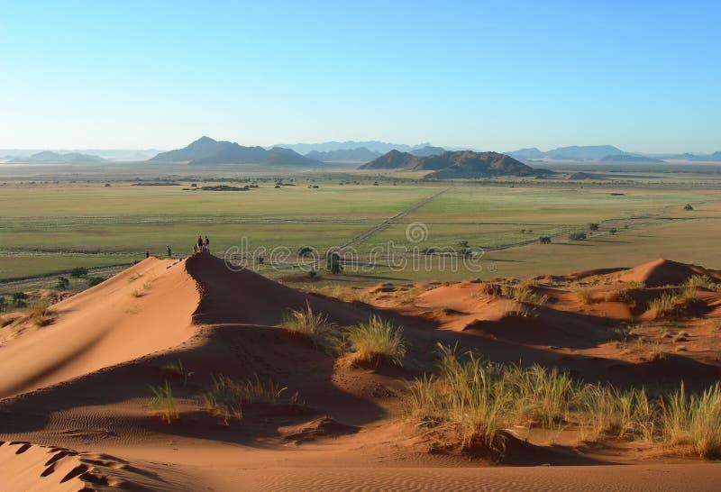 Sanddünen in der Kalahari-Wüste lizenzfreies stockbild