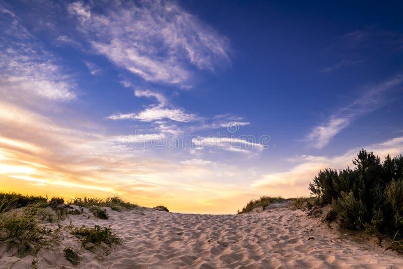 Sanddünen, die dem Ozean am Gutshof-Strand, Süd-Australien sich nähern lizenzfreie stockfotos