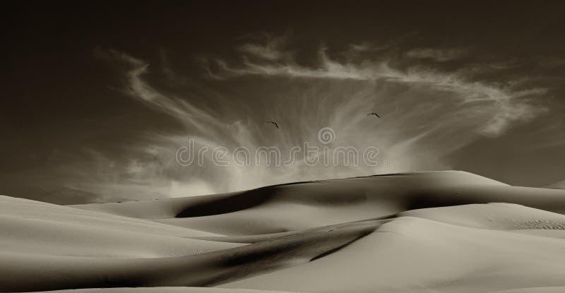 Sanddünen entlang der Grenze lizenzfreies stockfoto