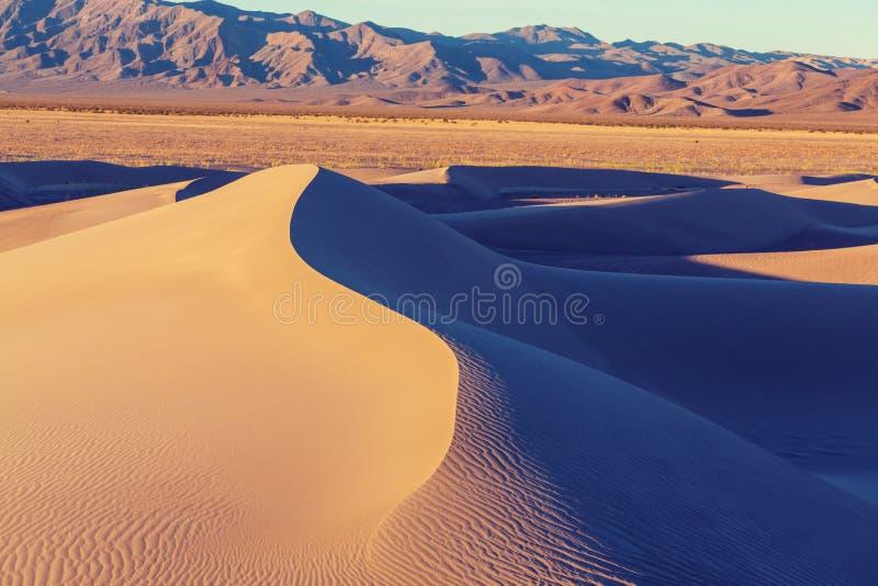 Sanddünen in Kalifornien stockbild