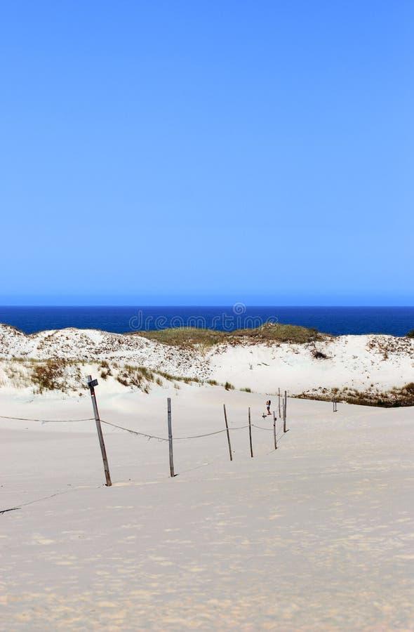 Sanddünen und die Küste lizenzfreies stockbild