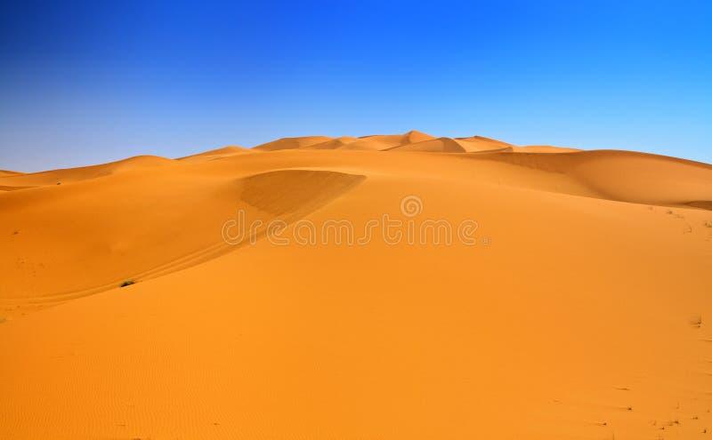 Sanddünen und wolkenloser blauer Himmel stockbild