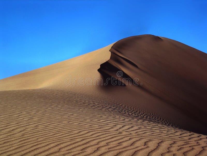 sanddune стоковые фото