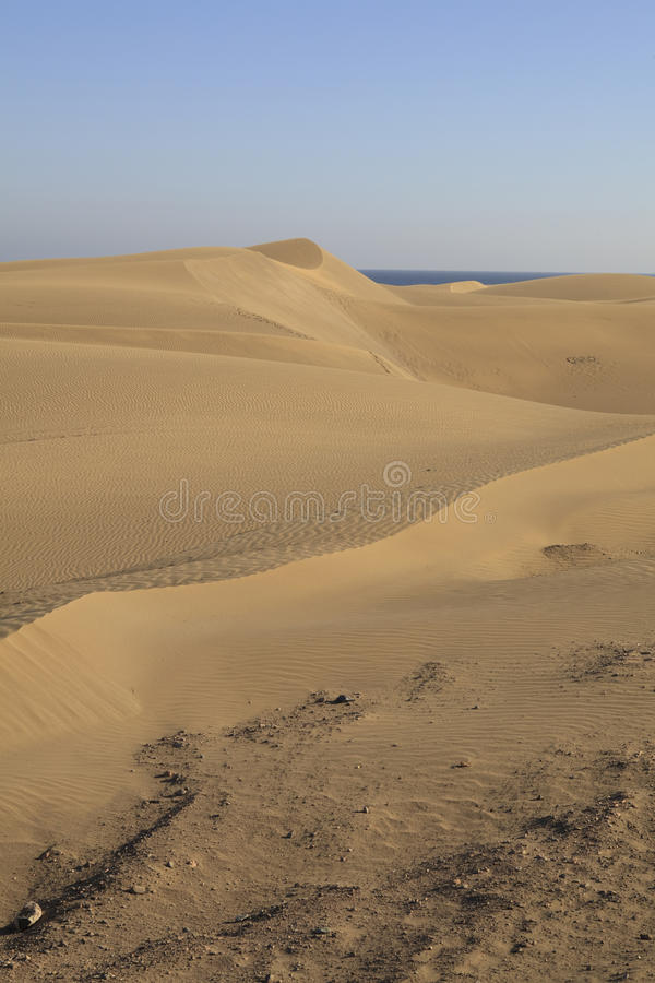 Free Sanddunes At Maspalomas Stock Photo - 23901340