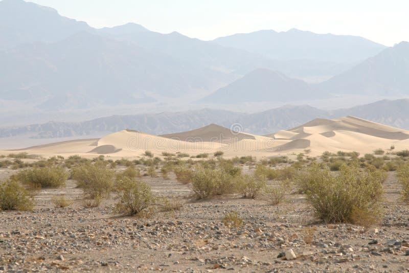Sanddunes in Death Valley stockfoto
