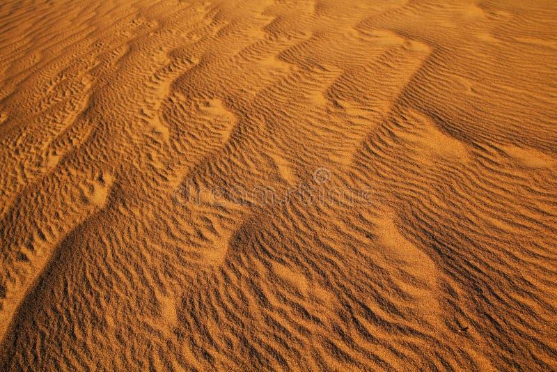 Sanddyn royaltyfria foton