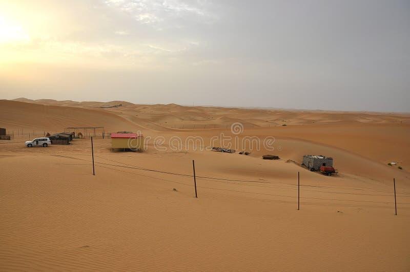 Sanddyn Abu Dhabi royaltyfria foton