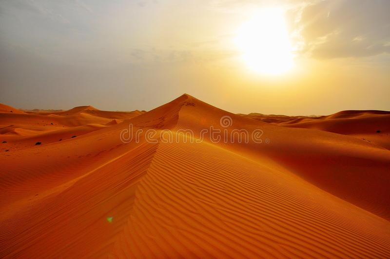 Sanddyn Abu Dhabi Dubai royaltyfri bild