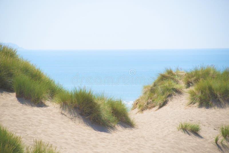 Sanddyn, gräs och en blått ser och himmel arkivfoto