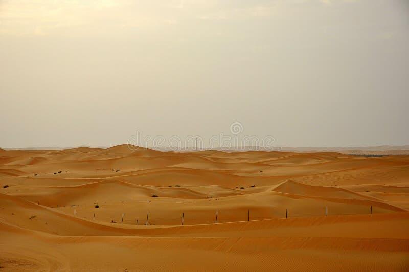Sanddyn i öken royaltyfri foto