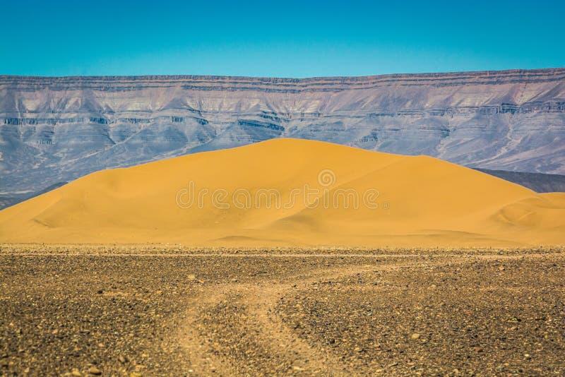 Sanddyn i det Zagora landskapet i Marocko arkivfoton