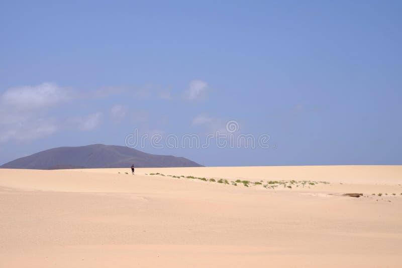 Sanddyn i nationalparken Corralejo, Fuerteventura royaltyfri bild