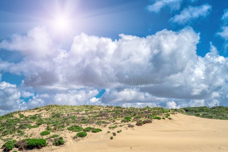 Sanddyn längs kusten på de yttre bankerna Sintra Portugal royaltyfria bilder