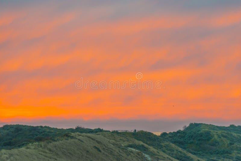 Sanddyn längs Nordsjökusten på soluppgång arkivfoto