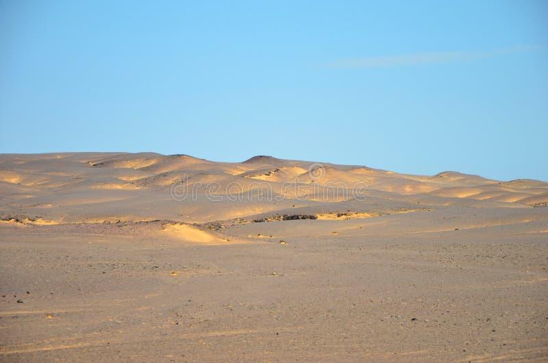 Sanddyn längs skelett- kust arkivfoton