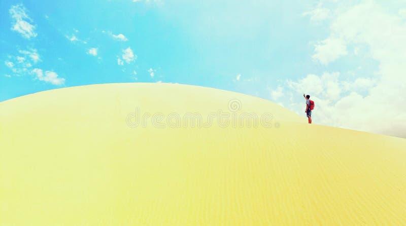 Sanddyn med ensamma TinTin royaltyfri bild