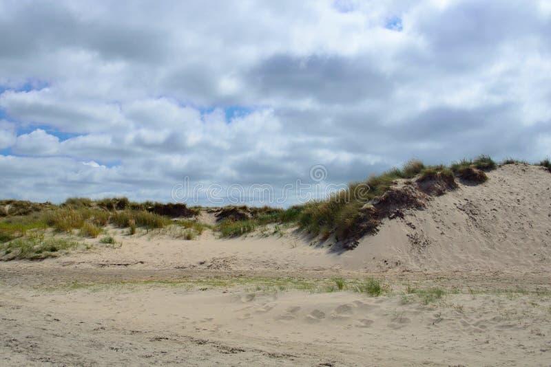Sanddyn med gräs på stranden av De Koog Texel i Nederländerna med molnig himmel arkivbild