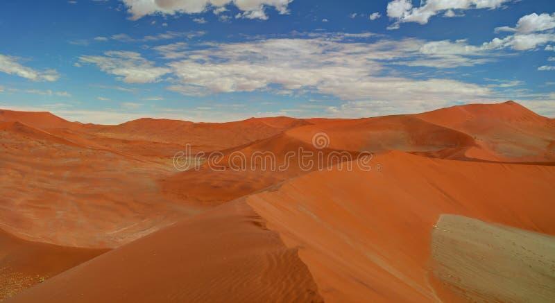 Sanddyn nära Swakopmund arkivfoto