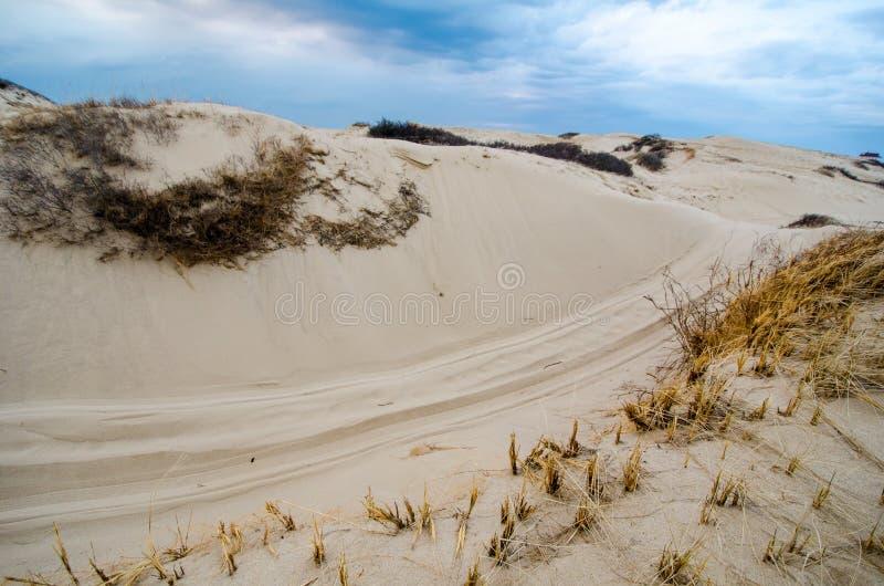 Sanddyn och drivor längs Cape Cod den nationella kusten på en mulen molnig dag arkivfoto