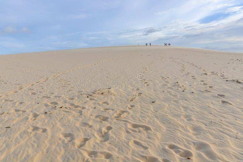 Sanddyn på sjösidan i Jericoacora, Brasilien royaltyfri fotografi