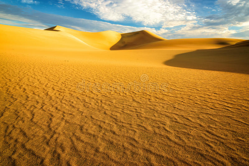 Sanddyn på soluppgång i öknen royaltyfri fotografi