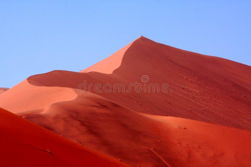 Sanddyn på Sossusvlei Namibia royaltyfria bilder