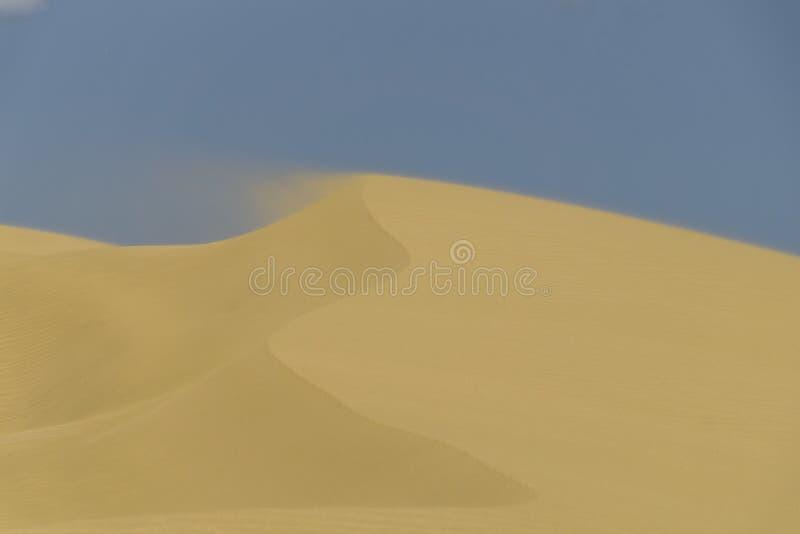 Sanddyn på Te Paki New Zealand royaltyfria bilder