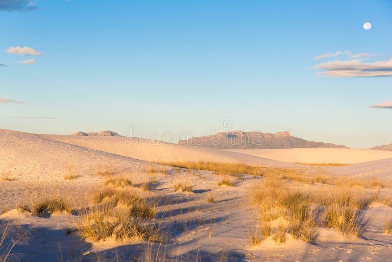 Sanddyn på vit sandpapprar den nya nationella monumentet [- Mexiko, USA] arkivfoto