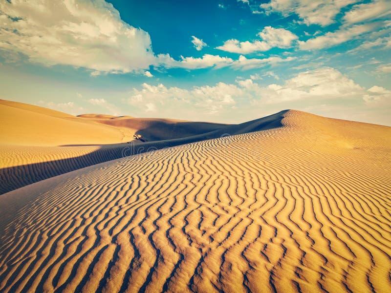 Sanddyner i öken royaltyfria foton