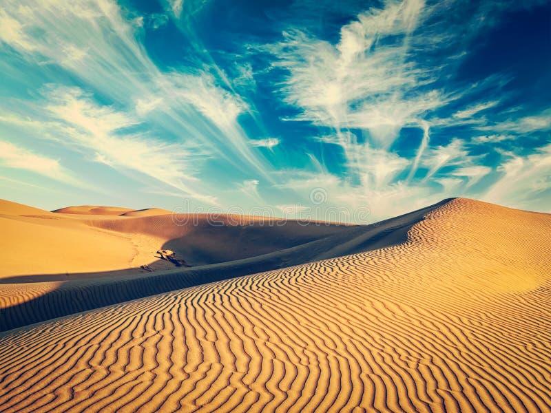 Sanddyner i öken arkivbilder