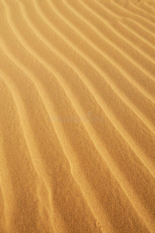 Sanden texturerar arkivbilder