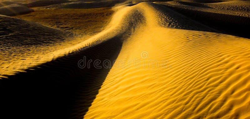 Sander och dyn av den Sahara öknen royaltyfri bild