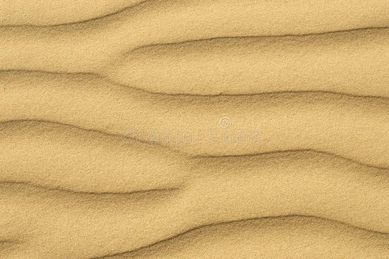 Sandig bakgrundshavskust royaltyfri foto