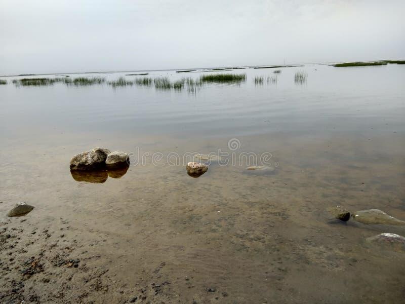 Sandig kust av fjärden royaltyfri fotografi