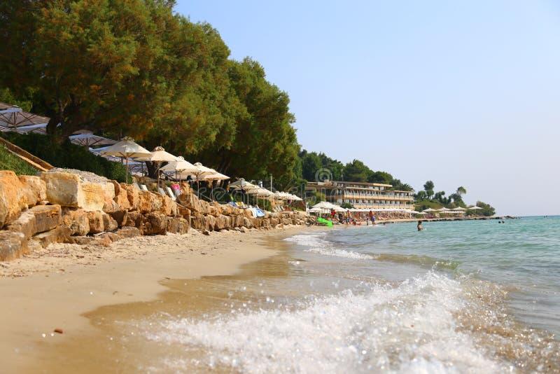 Sandig Sani för sommarmorgon strand med sunbeds och parasoller Chalkidiki, Grekland sanny dag royaltyfri fotografi