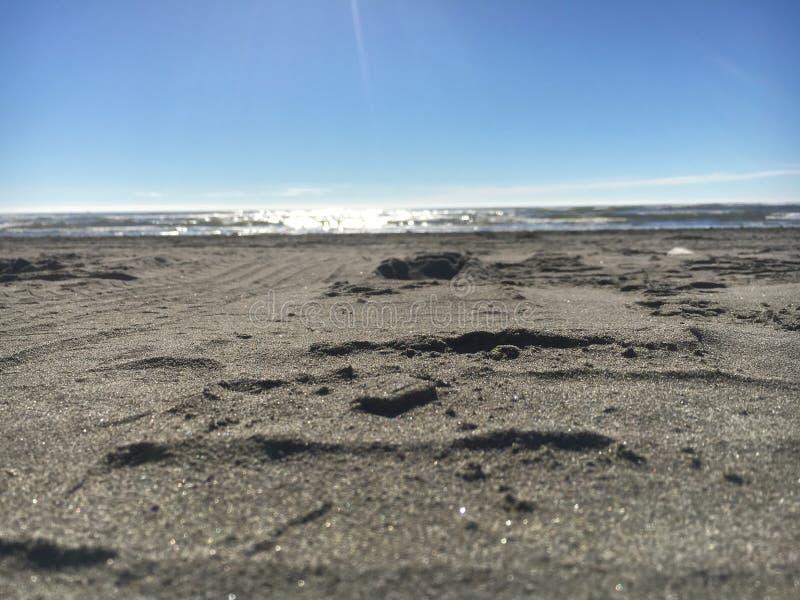 Sandig strand arkivfoton