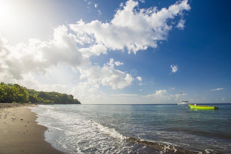 Sandig strand i det carribean havet arkivbild
