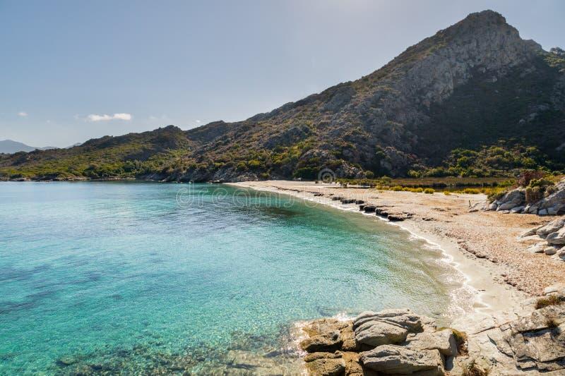 Sandig strand och kustlinje av ökendes Agriates i Korsika royaltyfria foton