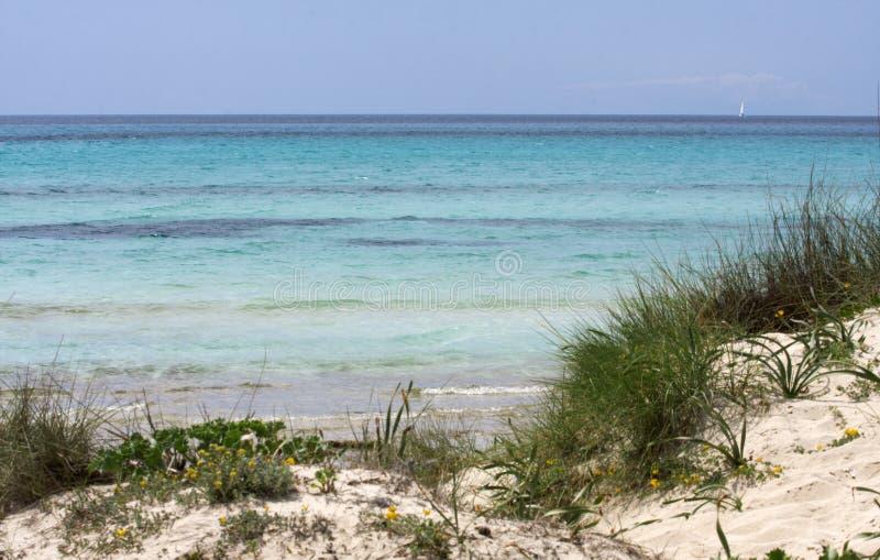 sandiger Strand Mallorca lizenzfreies stockfoto
