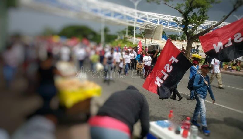Sandinista kämpar 40/19 royaltyfri fotografi