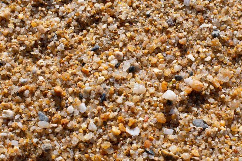 Sandkorndetalj arkivbild