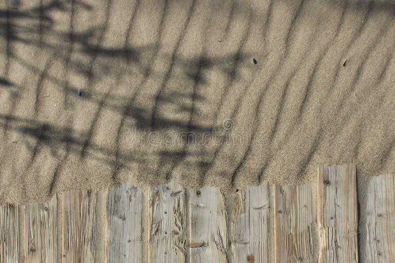 Sandkrusningar sätter på land trähorisontalbanabakgrund royaltyfri foto