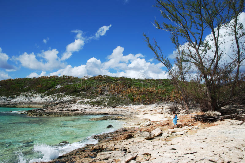 Download Sandless Beach stock photo. Image of caribbean, tropical - 22470718