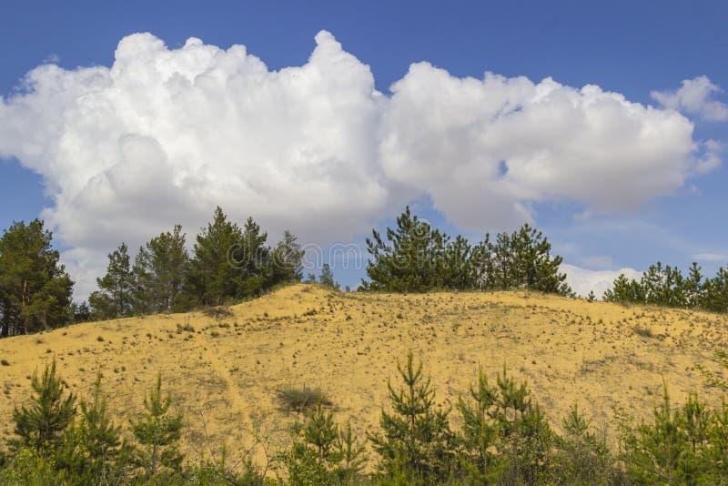 Sandpappra dyn och sörjer, vita moln på en ljus blå himmel royaltyfria bilder