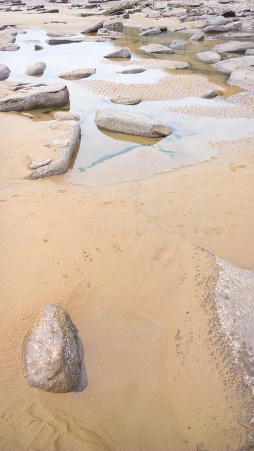 Sandpappra och vaggar på en strand fotografering för bildbyråer