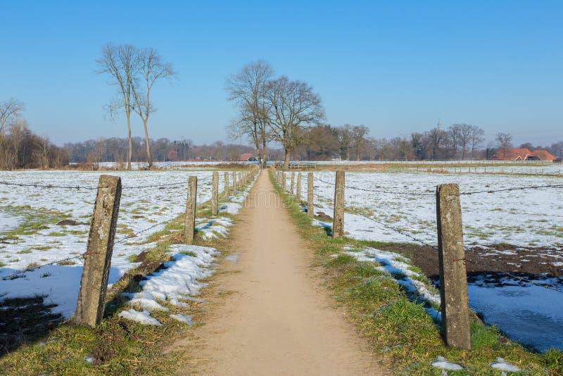 Sandpath między śnieżnymi łąkami w holenderskiej zimie obraz royalty free