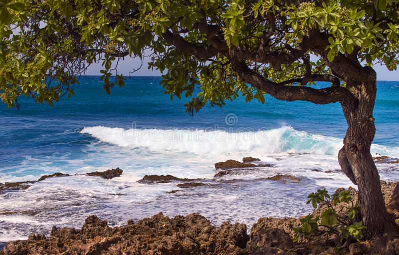 North Shore Coast, Oahu, Hawaii. The sands, surf, and landscape of the north shore of Oahu, world famous among surfers for big waves, on the island of Oahu in royalty free stock image